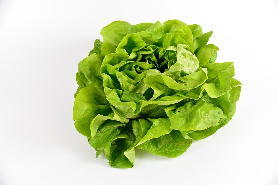 salad-2114149_960_720